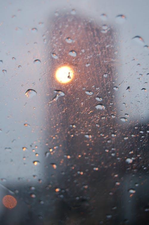 光, 光線, 輕的, 雨 的 免费素材图片