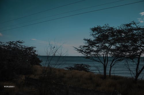 Foto stok gratis arido, biru, caribe, compostela