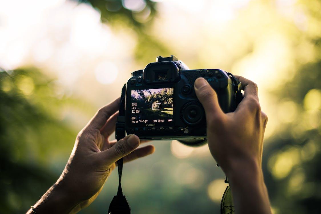 Person Holding Dslr Camera Selective Focal Photo