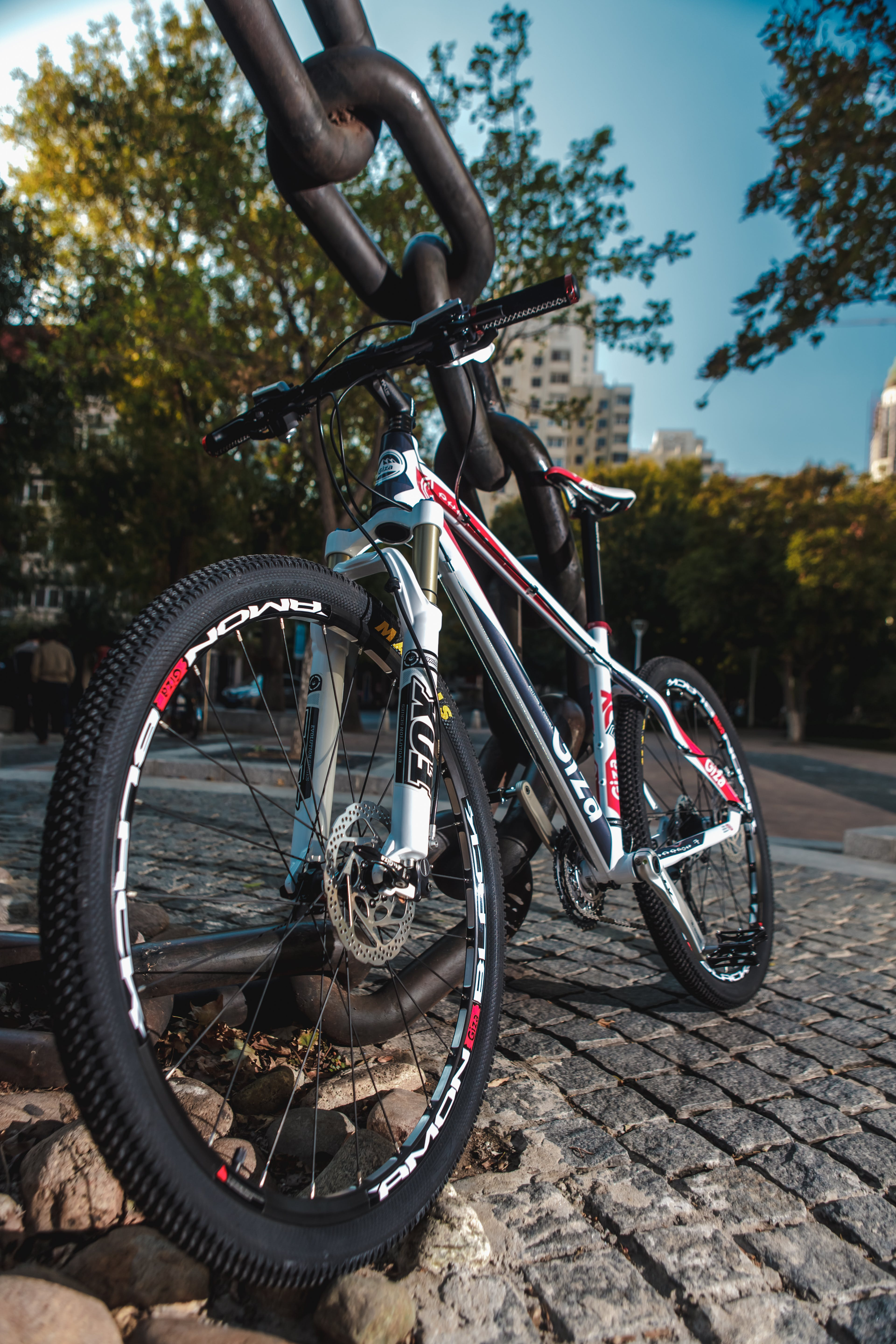 Low Angled Photo of Black Red and White Hardtail Bike