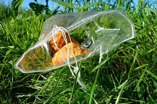 Free stock photo of grass, litter, litterbug, plastic bag