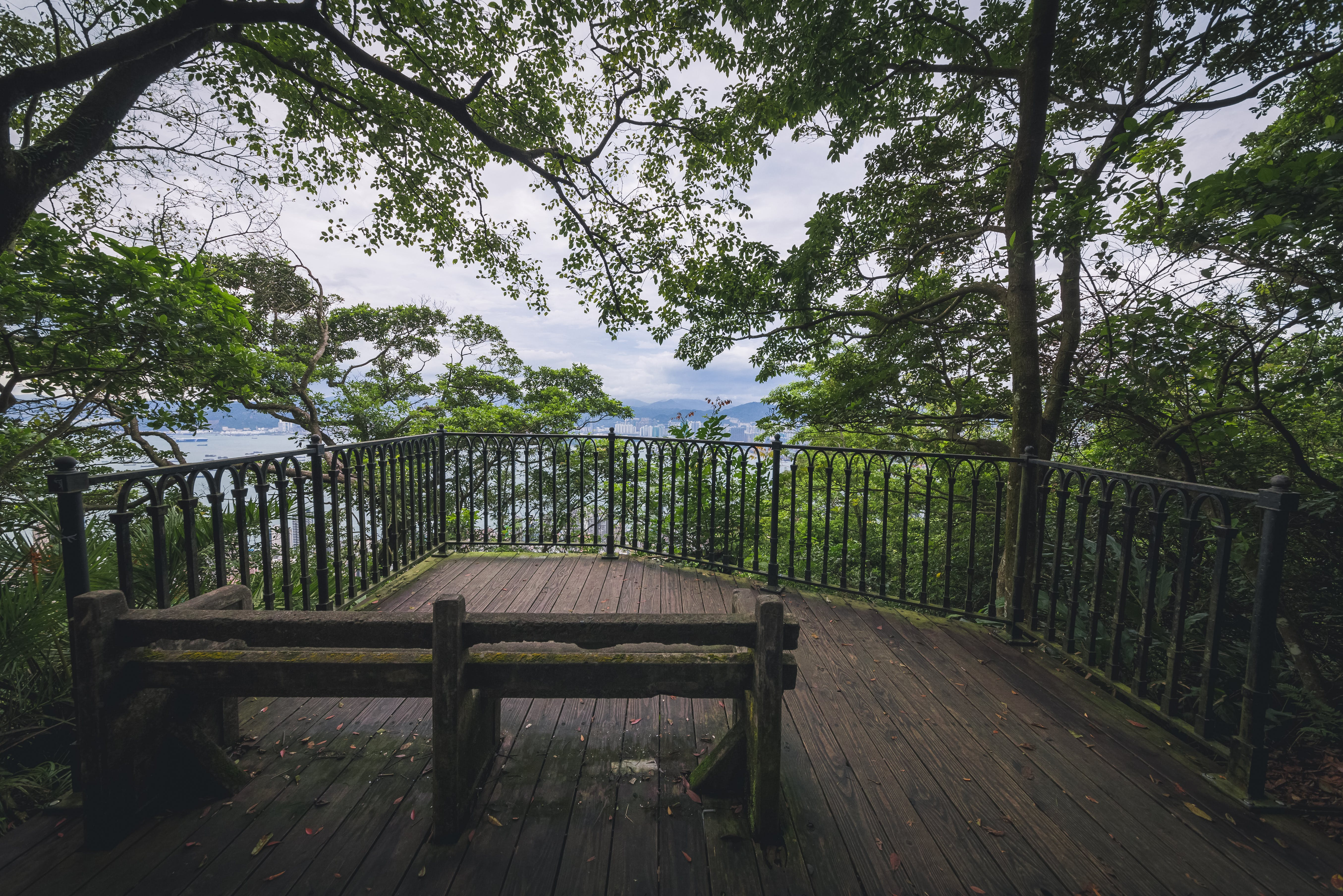 Free stock photo of abandoned, chair, forest, observation deck