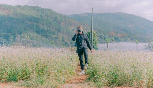 Základová fotografie zdarma na téma denní, denní světlo, flóra, focení