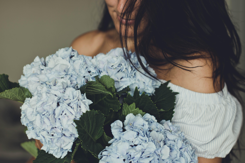 Kostenloses Stock Foto zu bezaubernd, blätter, blauen blüten, blühen