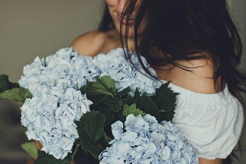 Gratis stockfoto met aanbiddelijk, aantrekkelijk mooi, blauwe bloemen, bloeien
