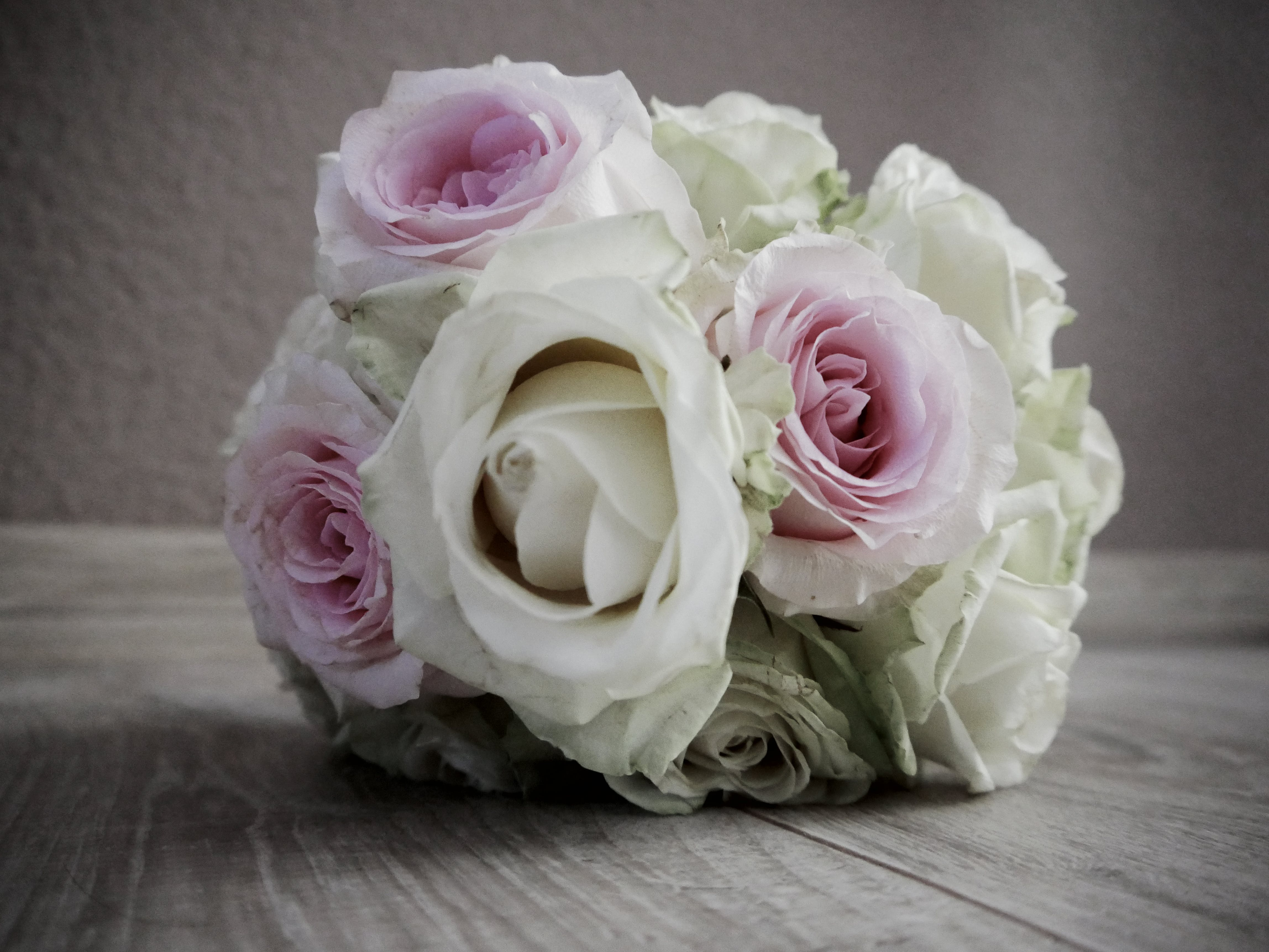 Free stock photo of bunch of flowers, love, pink roses, romance