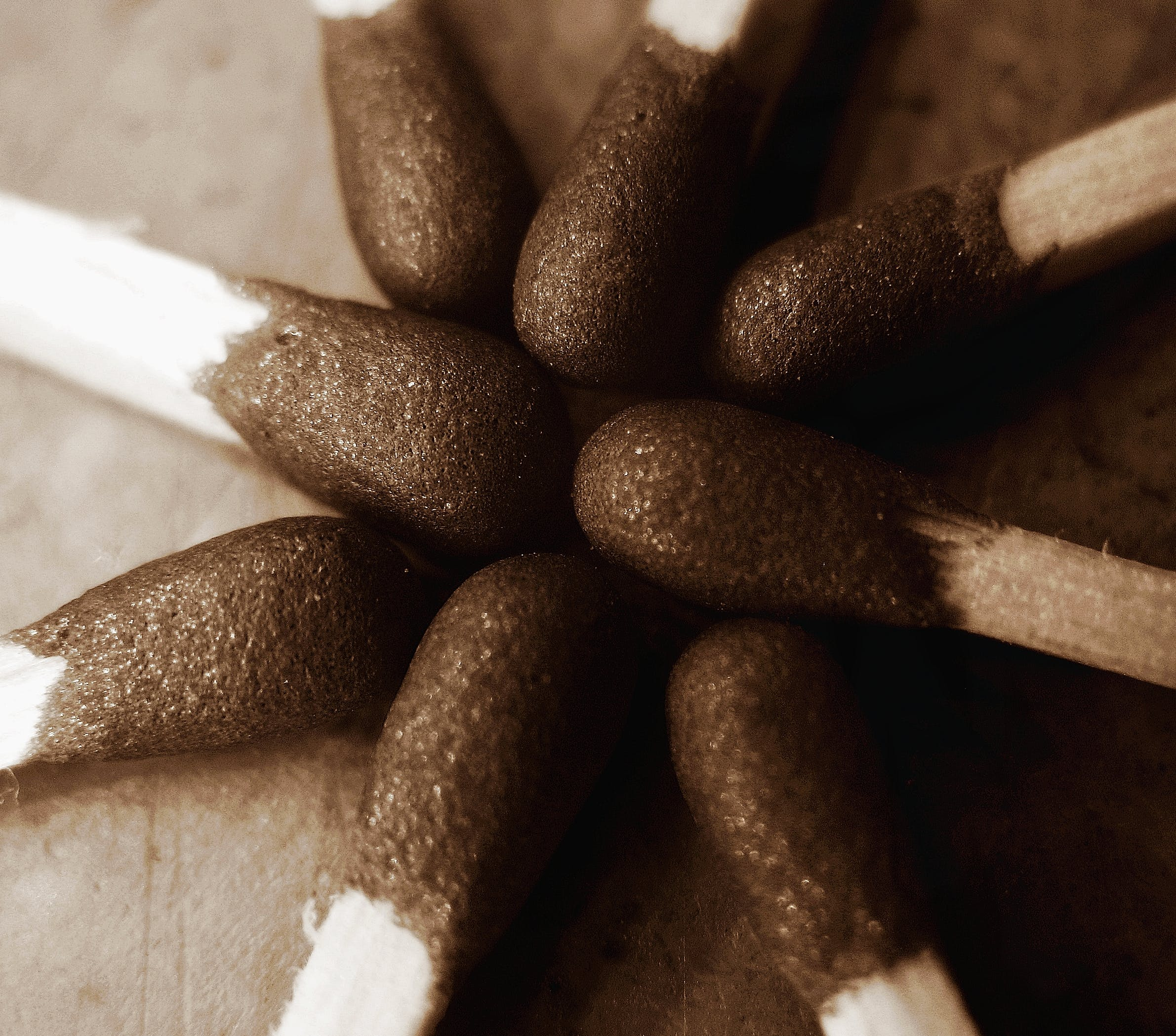 Free stock photo of match, match stick, matchbox, sepia