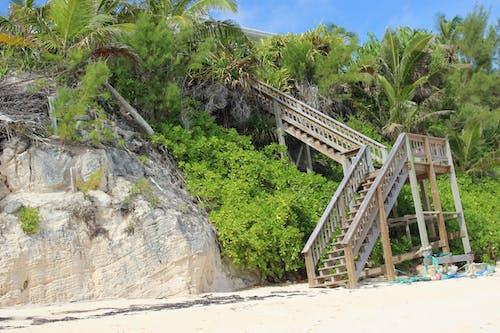 Ilmainen kuvapankkikuva tunnisteilla beacfront, hiekka, jyrkkä, palmupuut