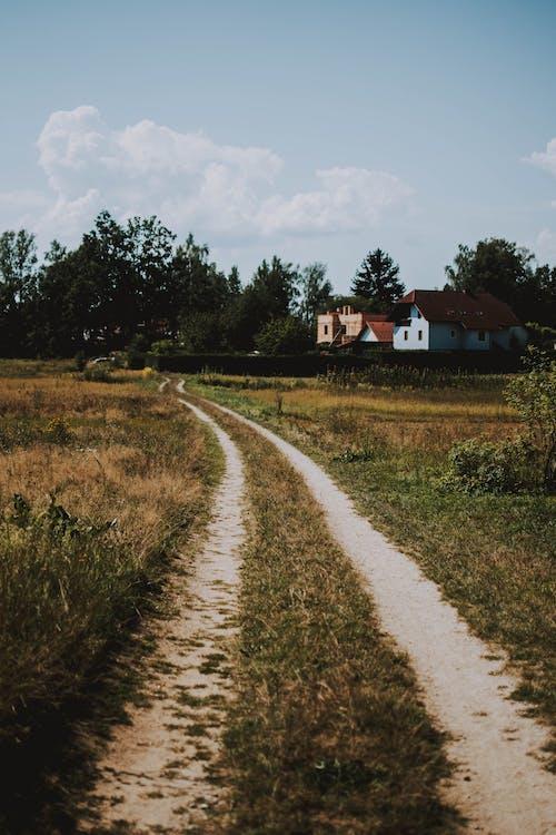 αγρόκτημα, άστρωτος δρόμος, γήπεδο