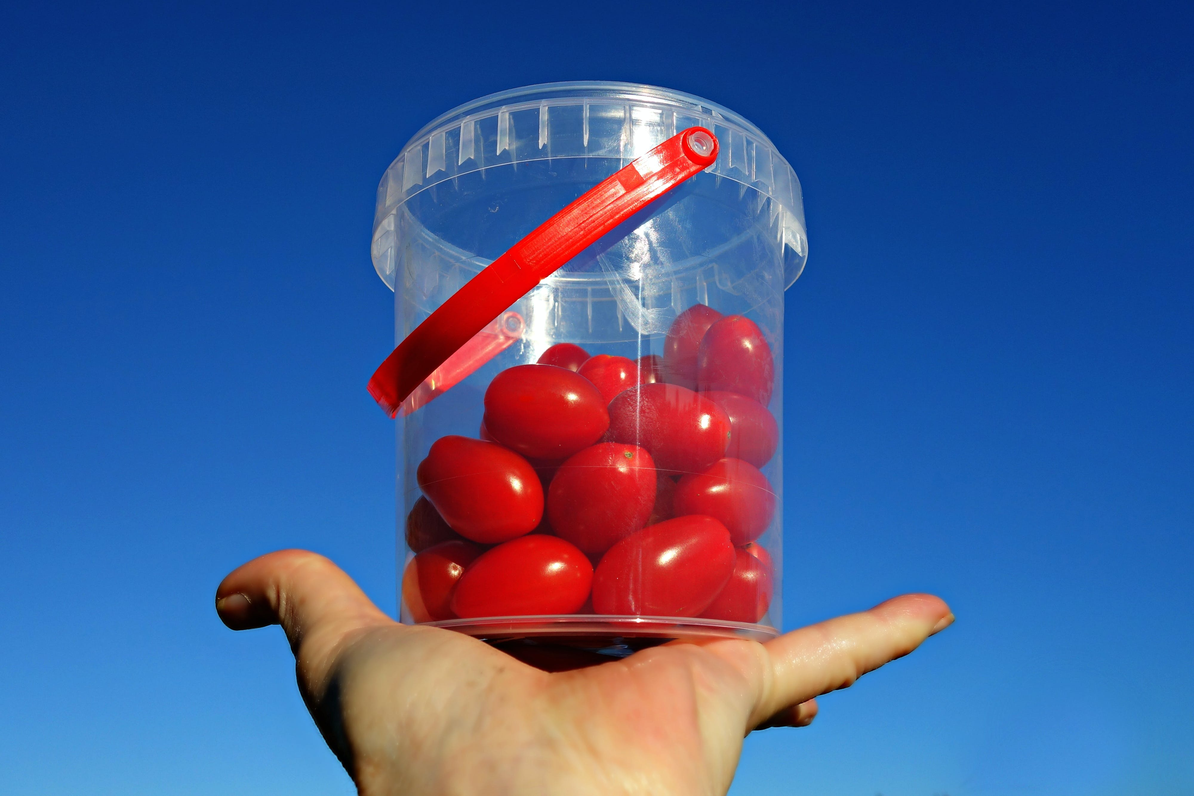of food, grape tomato, healthy, macro