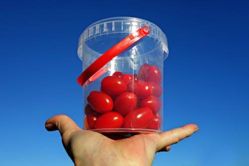 Free stock photo of food, grape tomato, healthy, macro