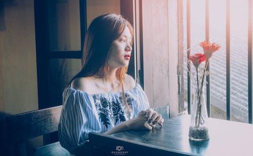 Foto d'estoc gratuïta de finestres, flors, hội an, nena