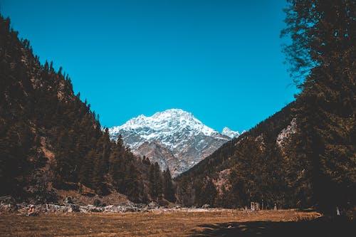 Fotobanka sbezplatnými fotkami na tému divá príroda, divý, hory, kino