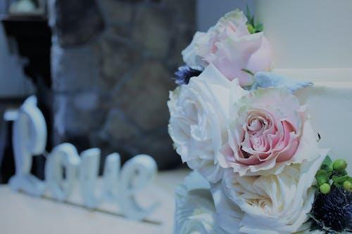 Free stock photo of love, wedding flowers