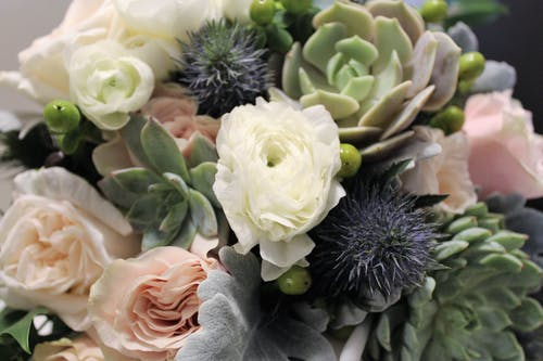 Free stock photo of flowers, succulents, wedding, wedding bouquet