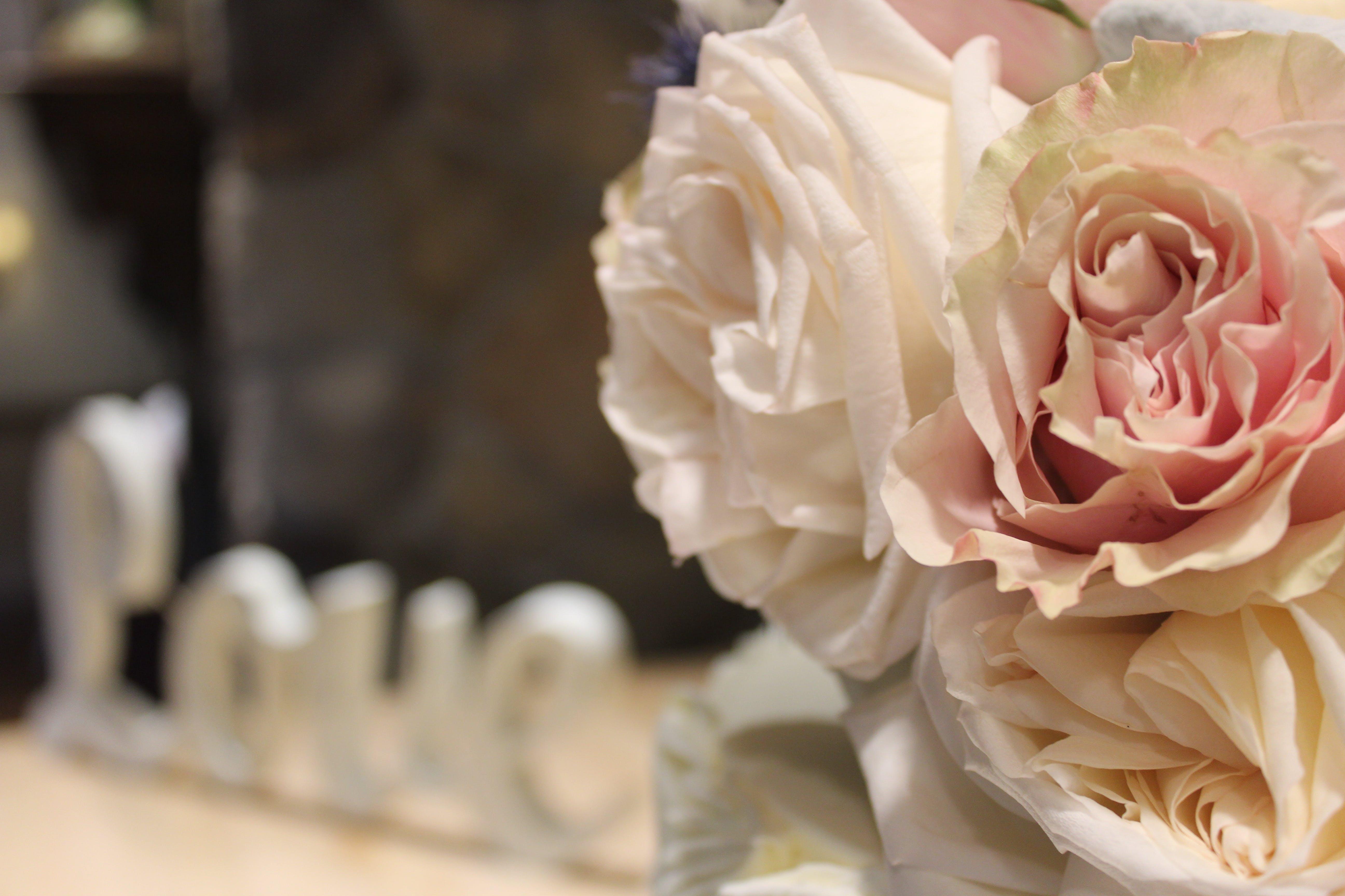Free stock photo of love, wedding, wedding flowers
