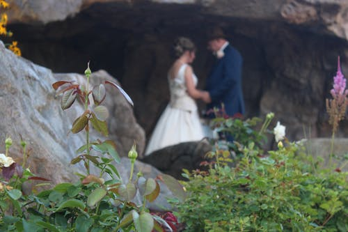 Free stock photo of cave, flowers, marriage, people getting married