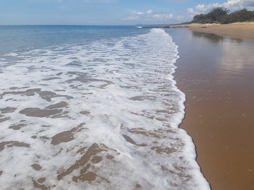 Free stock photo of beach, ocean, sandy beach, sea foam