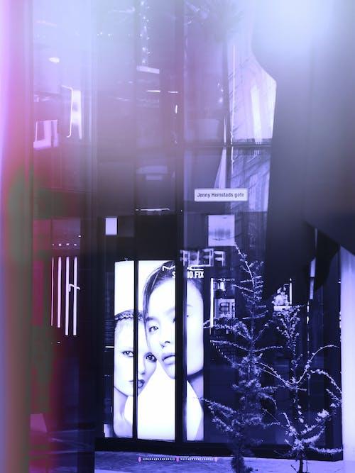 店の窓の無料の写真素材