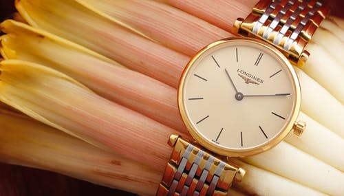 Gratis stockfoto met artikel, fashion, longines