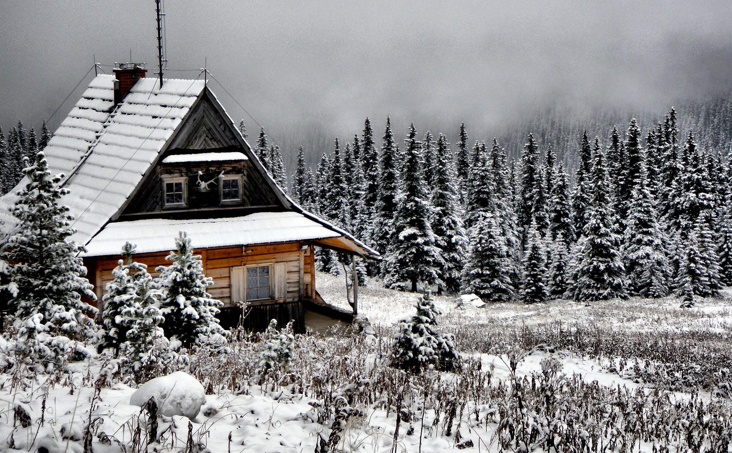 Gratis lagerfoto af bjerg, blå, dag, december