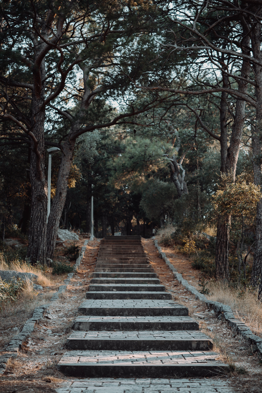 Empty Stairway