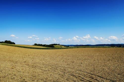 Gratis lagerfoto af bakke, bane, blå, blå himmel