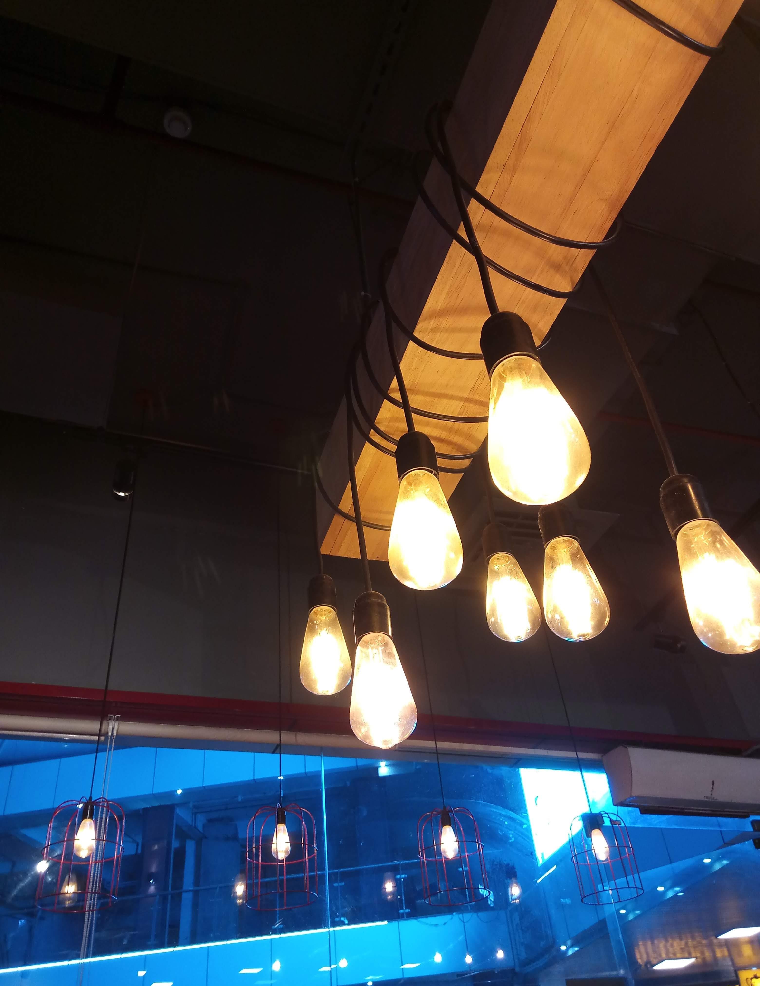 blue, brown, bulbs