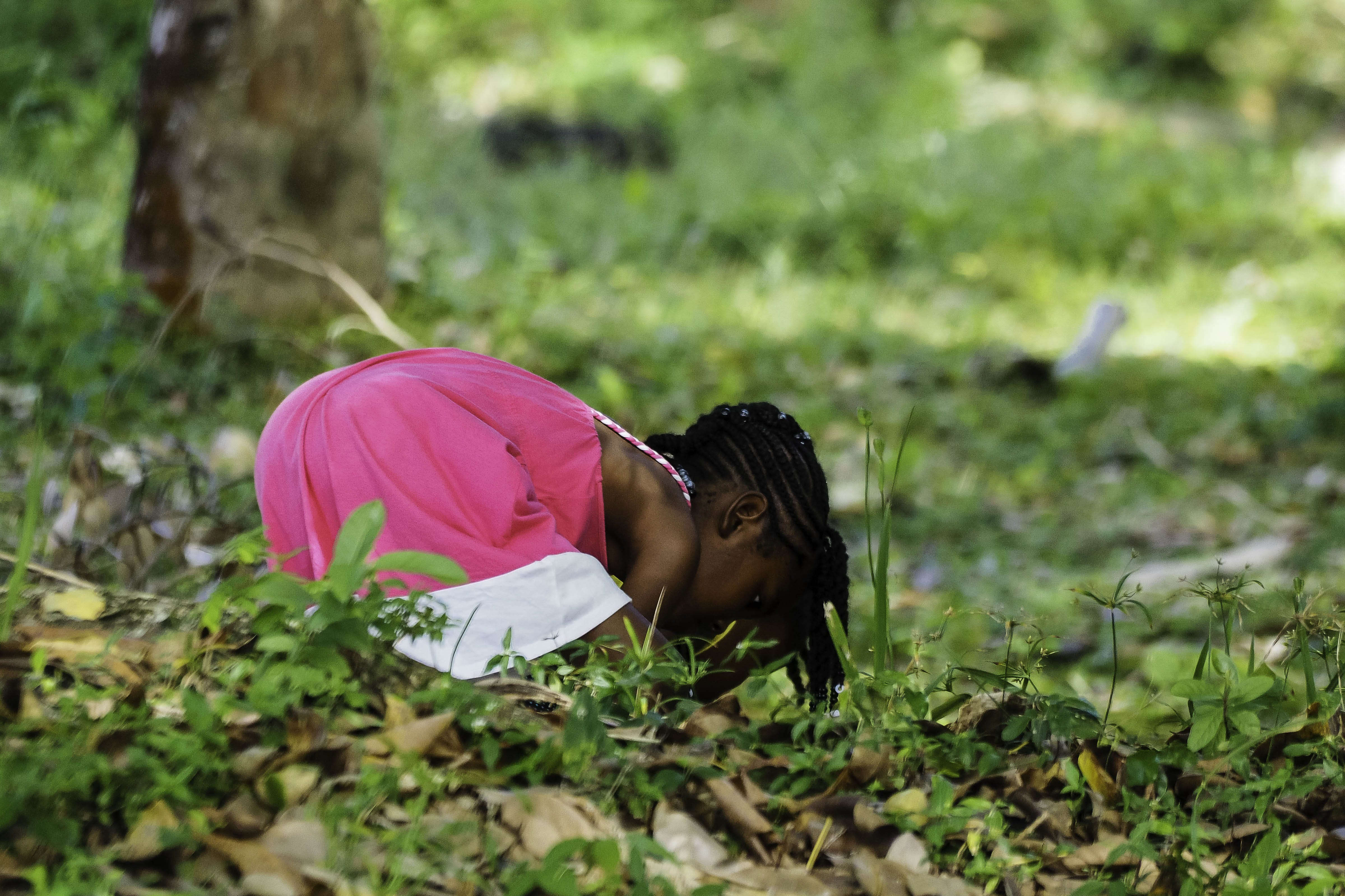 Free stock photo of green field, little girl