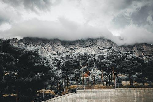 Foto stok gratis air, alam, awan, hitam dan putih