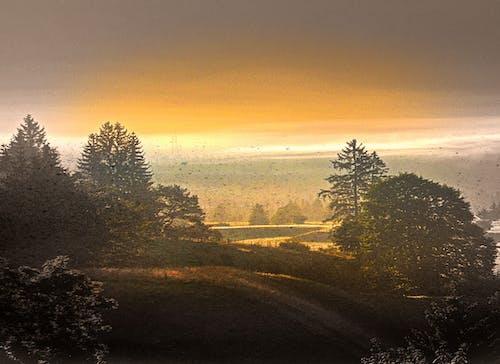 夕日, 風景の無料の写真素材