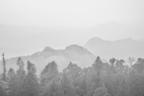 Free stock photo of black and white, colorado, landscape, mist