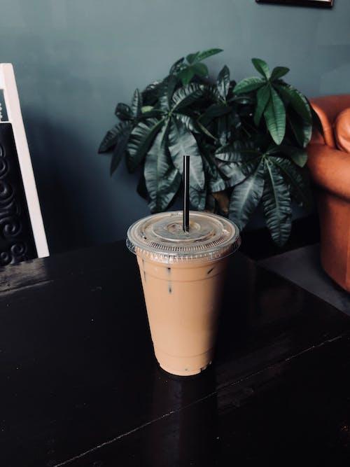 Darmowe zdjęcie z galerii z ciemnozielone rośliny, ciemnozielony, ciemny, czarna kawa