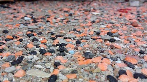renkli kum içeren Ücretsiz stok fotoğraf