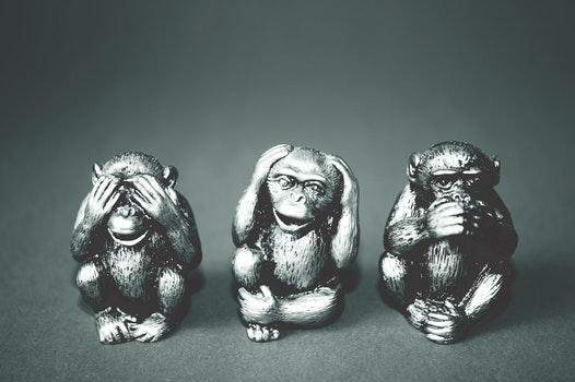 Free stock photo of black-and-white, dark, monkeys, statue