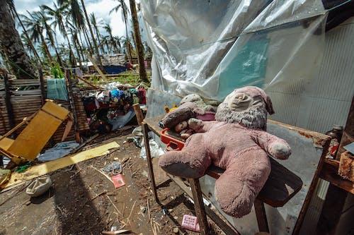 Foto d'estoc gratuïta de brut, calamitat, joguines, malbaratament