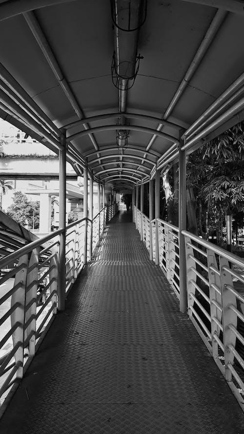 パブリック, 公共交通機関, 白, 白黒の無料の写真素材