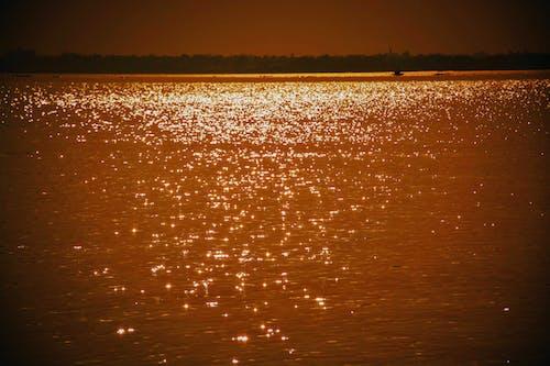 Free stock photo of bengal, dusk, glittering