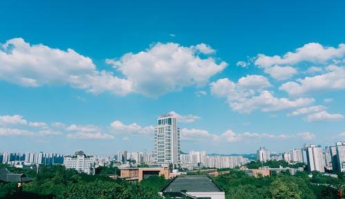 Základová fotografie zdarma na téma budova, jasná obloha, modrá obloha, škola