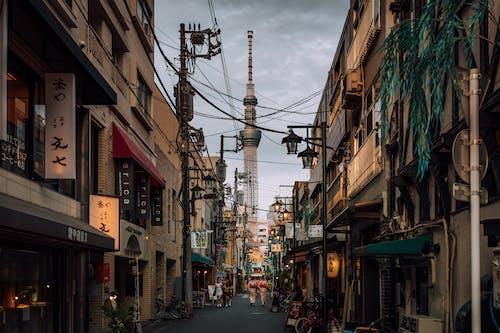Immagine gratuita di albero del cielo di tokyo, architettura, azione, casa