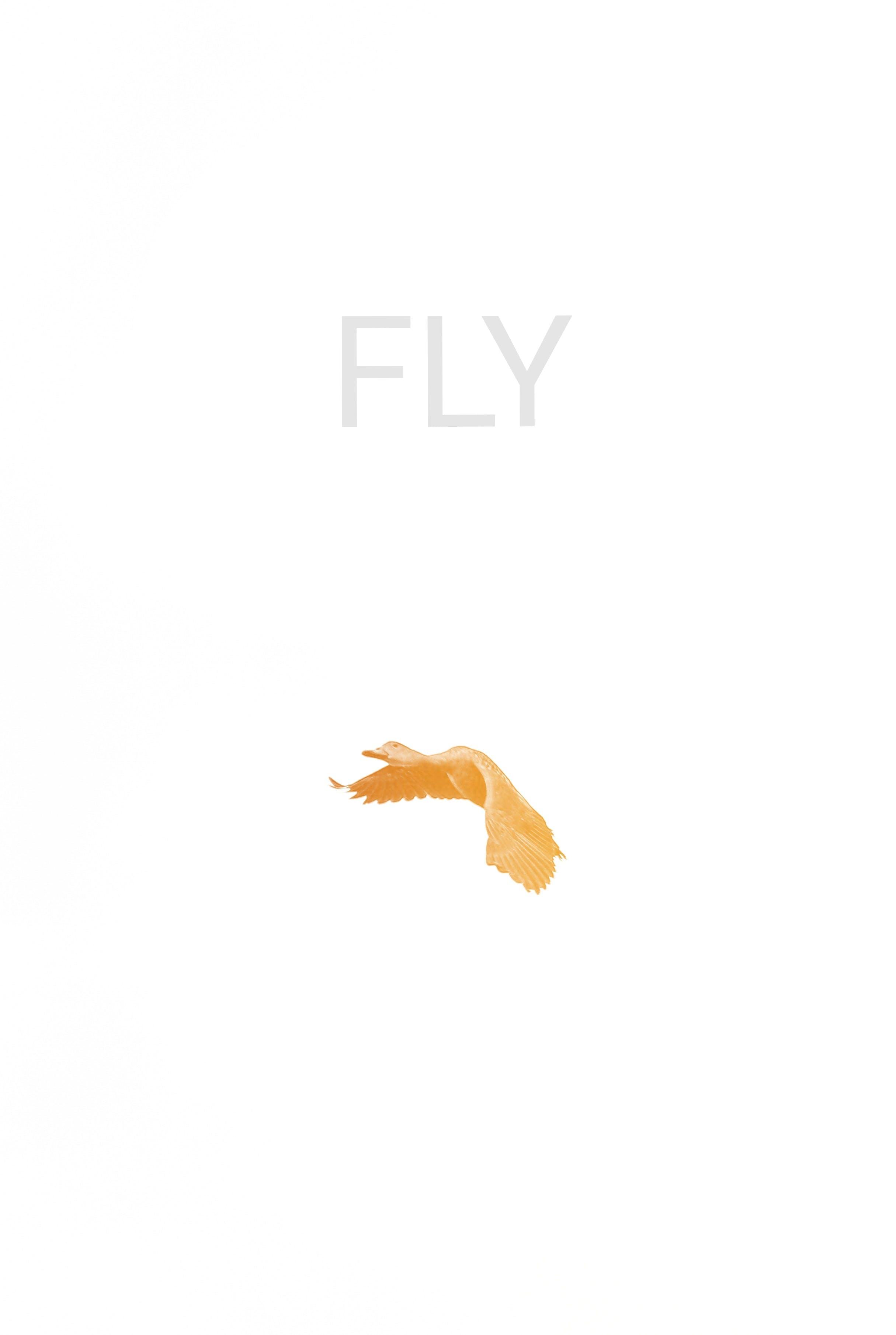 Free stock photo of bird, text