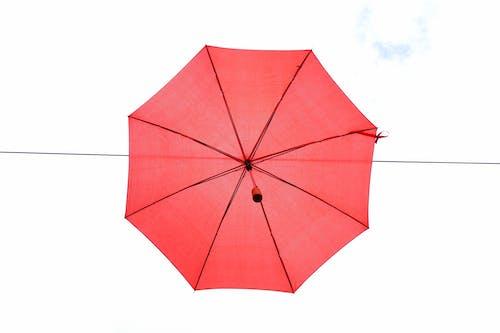 パターン, 三角形, 保護, 傘の無料の写真素材