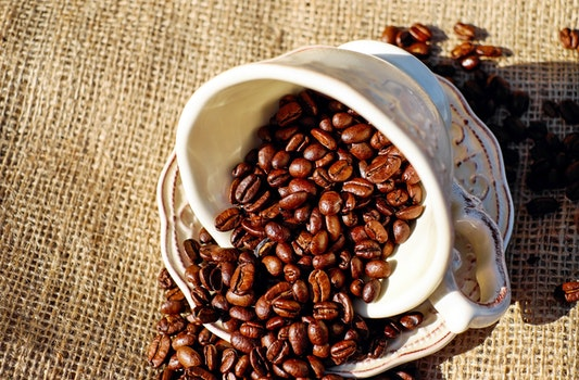 Free stock photo of caffeine, cup, mug, coffee beans