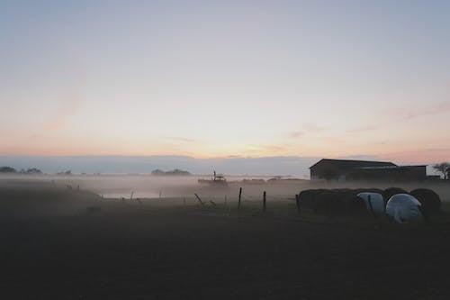 Gratis lagerfoto af bane, dis, gård, græsarealer