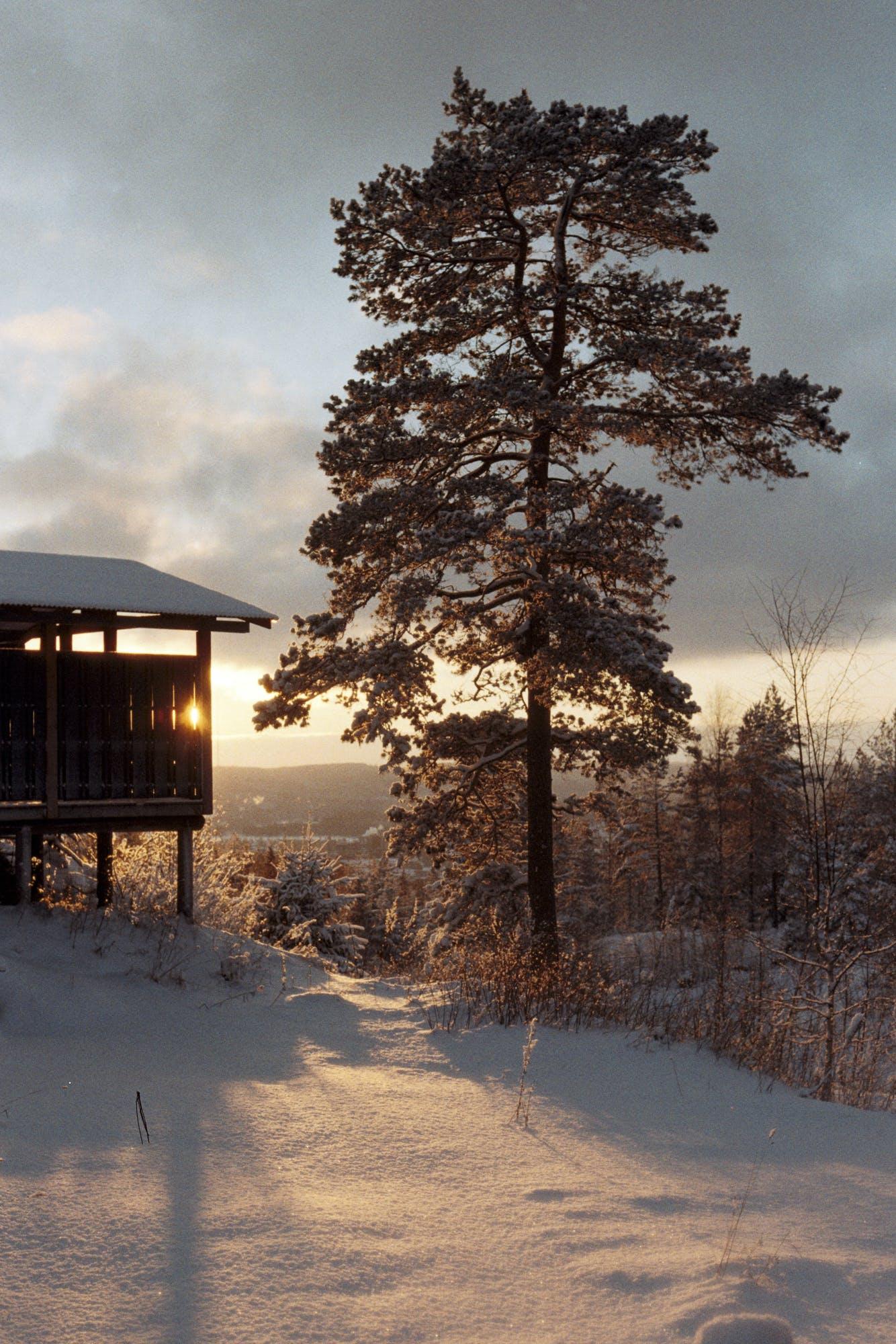 Free stock photo of cabin, house, snow, sunset