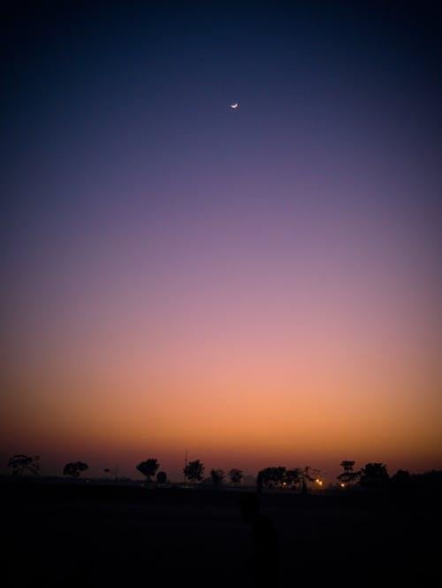açık hava, ağaçlar, akşam, akşam ay içeren Ücretsiz stok fotoğraf