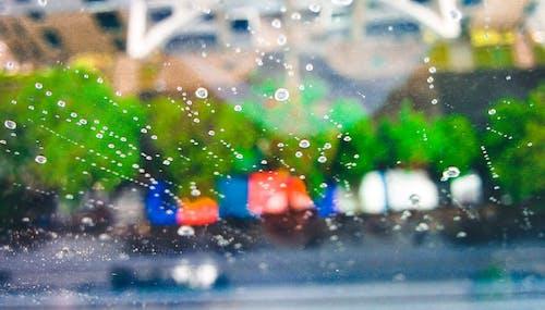Free stock photo of monsoon, rain, rain drops