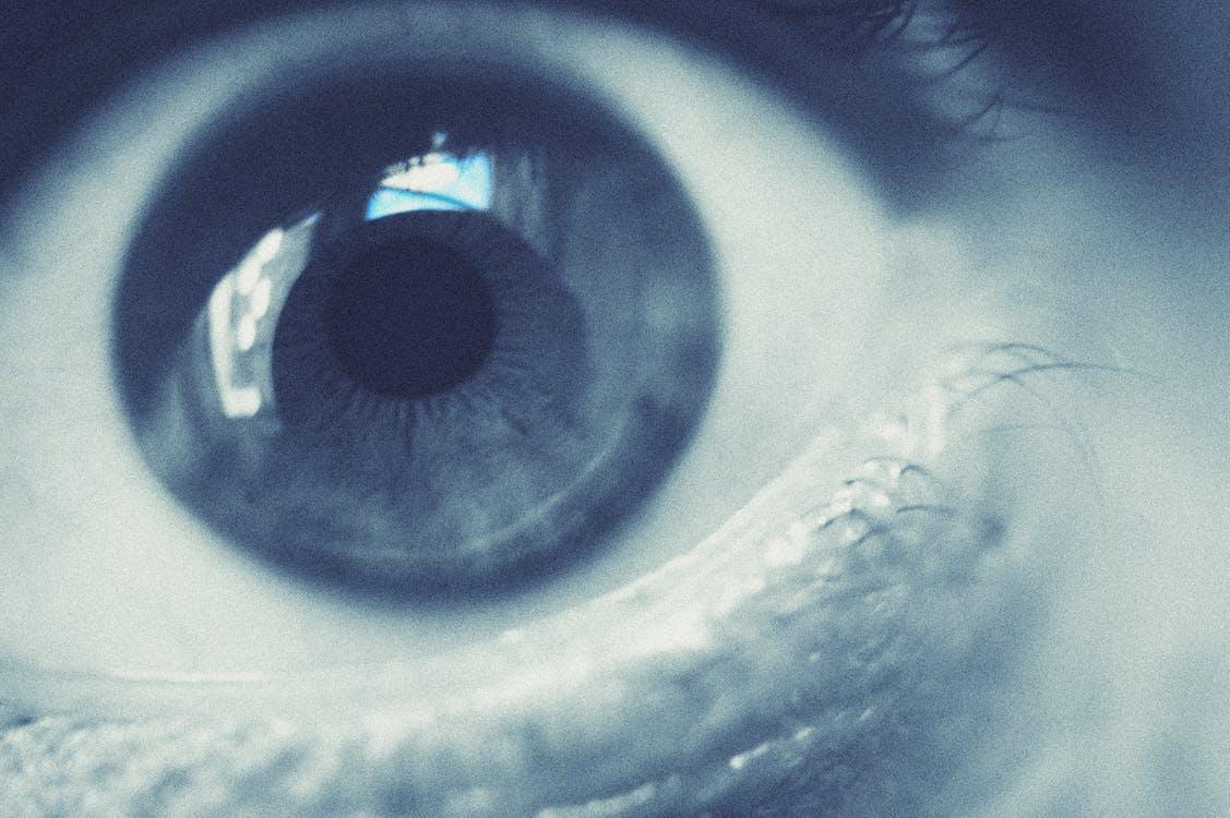 マクロ撮影, 眼, 瞳