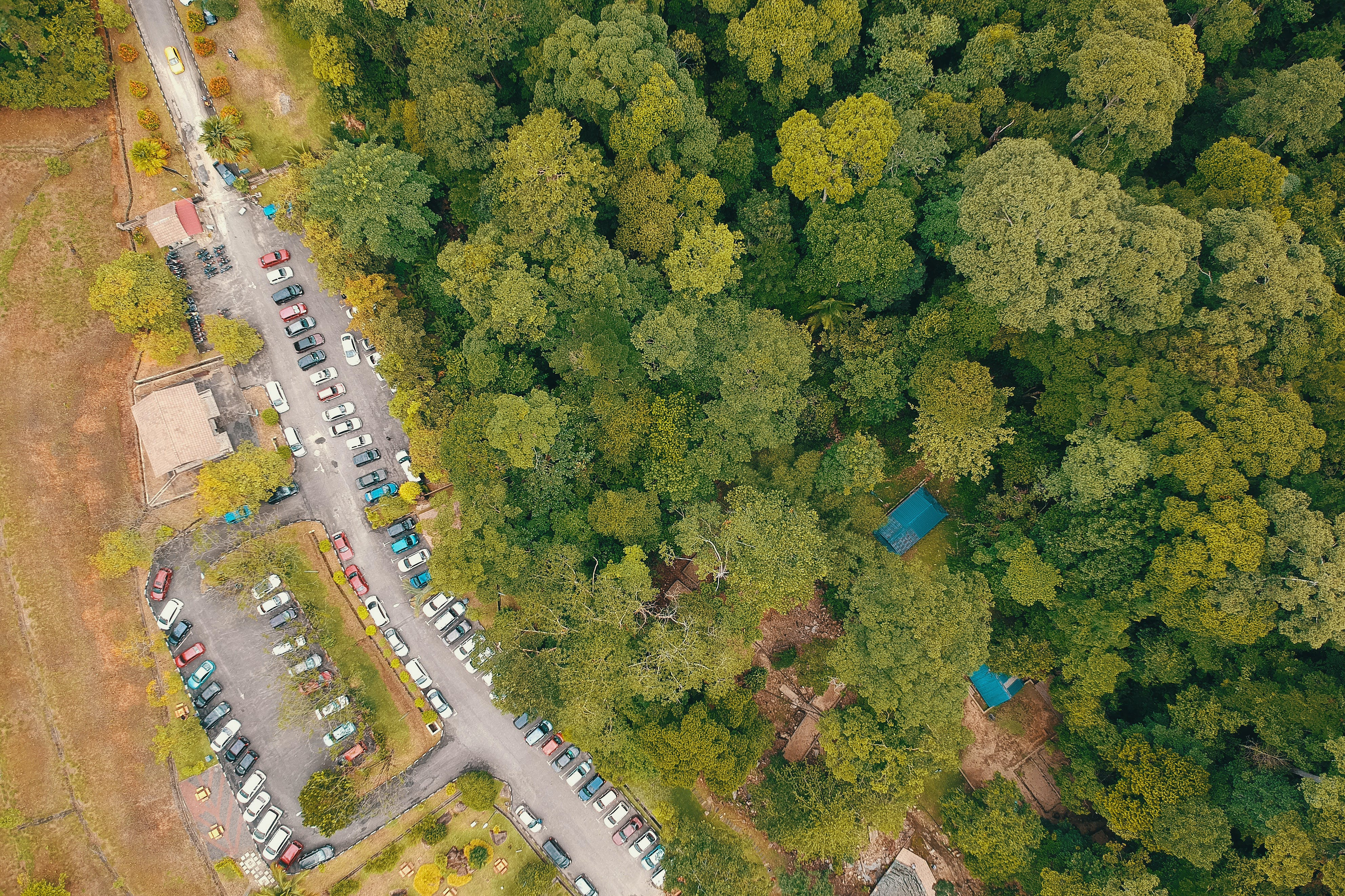 Aerial Photo of Cars Parked Near Forest