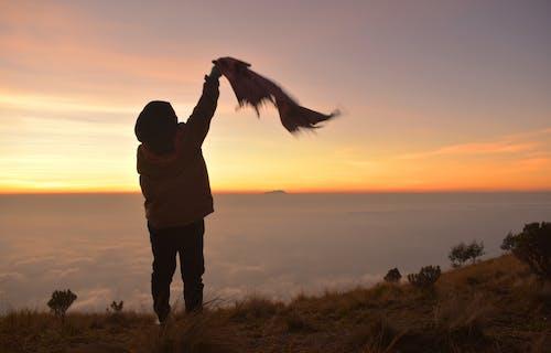 Ilmainen kuvapankkikuva tunnisteilla auringonnousu, naine, nuori, päivänsini